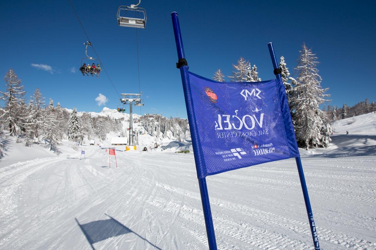 ski school vogel